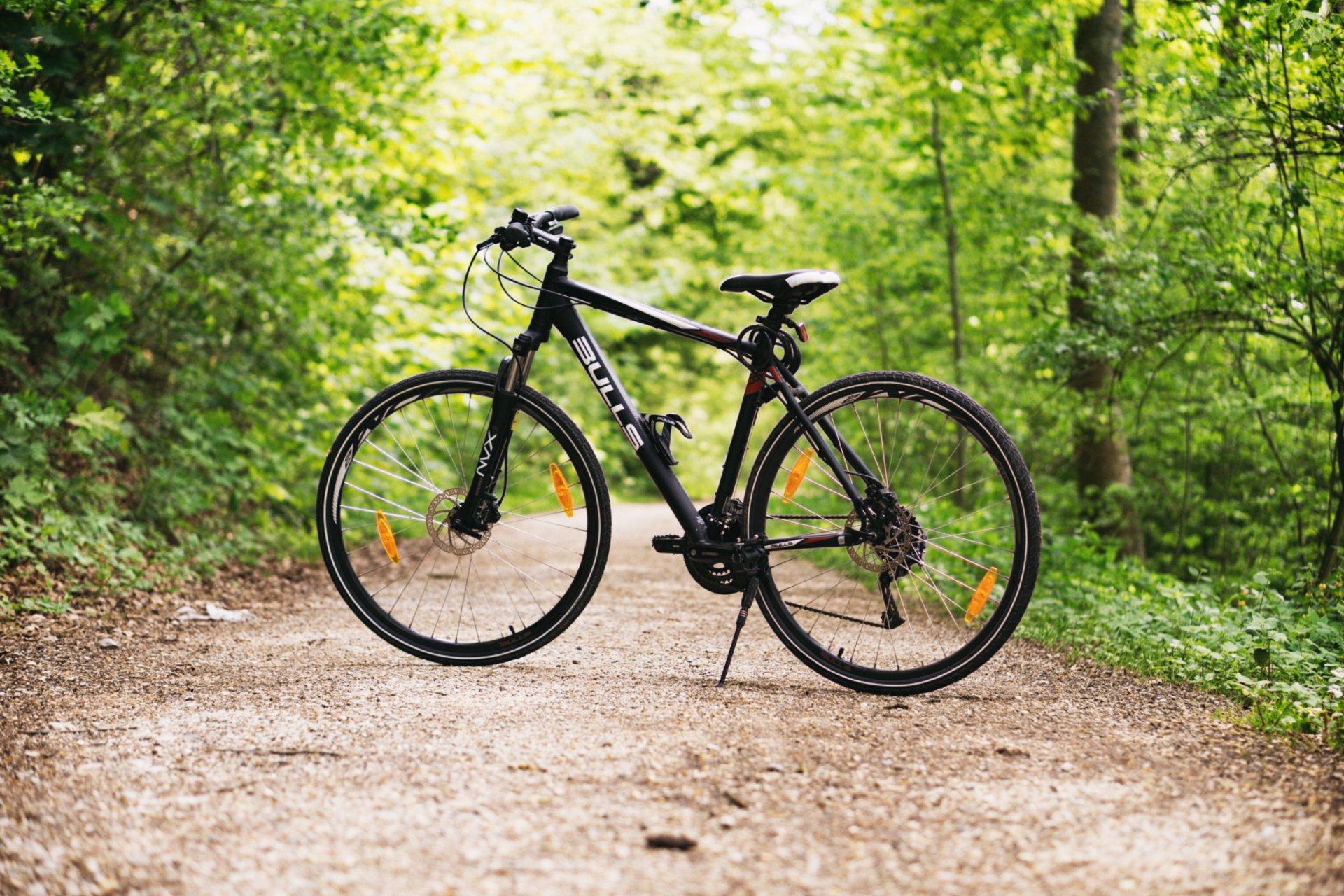 """Vaizdo rezultatas pagal užklausą """"dviračių nuoma neries regioninis parkas"""""""